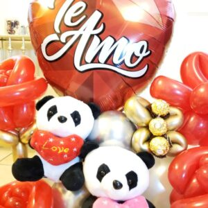 Valentines Corazon Te amo